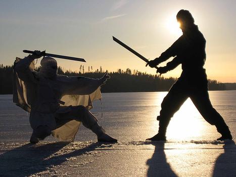 Ninja Science: Energy Bursts May Be Key to Martial Arts Skills | Internal Martial Arts | Scoop.it