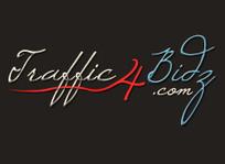 traffic4bidz.com : Bid to Win, Online Bidding Site, Live Auction Website   Professional Video   Scoop.it