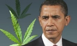 "Obama: ""No es prioritario perseguir el consumo de marihuana"" 