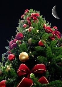 Sélection cadeaux de Noël 2012 | Newsletter Cher bouquin | Scoop.it