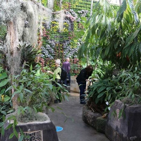 Sydney's Royal Botanic Garden marks 200th year | Australian Plants on the Web | Scoop.it