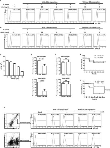 MAE4, an eLtaS monoclonal antibody, blocks Staphylococcus aureus virulence | Host Cell & Pathogen Interactions | Scoop.it