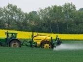 Studie: Pestizide verringern Artenvielfalt in Gewässern   Fundkiste   Scoop.it