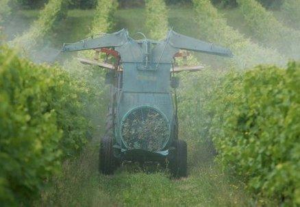Pesticides: le vignoble charentais sous l'oeil des scientifiques | Le Vin et + encore | Scoop.it
