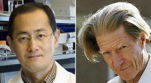 El Nobel de Medicina premia la reprogramación de células adultas | The advances and progresses in the Science | Scoop.it