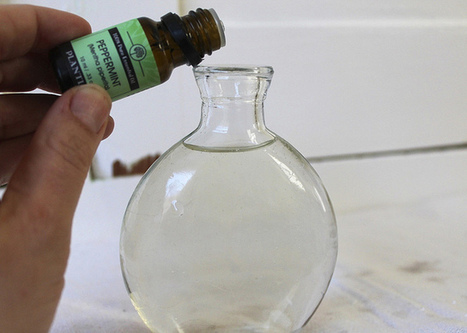 DIY Peppermint Mouthwash   TheDabblist   Aromatherapy plus   Scoop.it