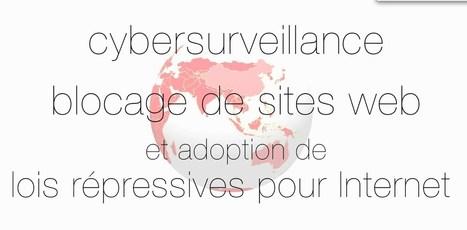 Netizen2013 - FR   Journalisme indépendant à l'ère du numérique   Delphine   Scoop.it