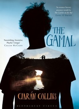 Book Review: The Gamal by Ciaran Collins | The Irish Literary Times | Scoop.it