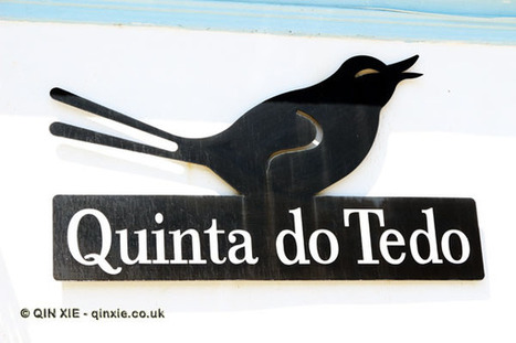 Quinta do Tedo, Folgosa | Amateur Wine | Wine | Scoop.it