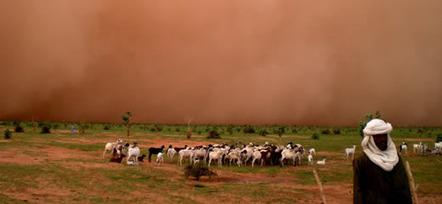 Sécurité des moyens d'existence : changements climatiques, migrations et conflits au Sahel   Questions de développement ...   Scoop.it
