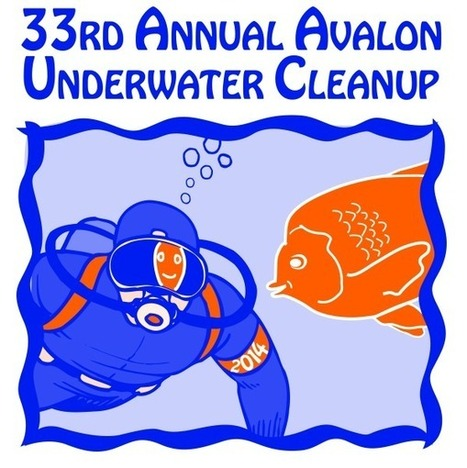 Exciting Dive Adventures at the 33rd Annual Avalon Underwater Cleanup | Dive Travel News & Tips | Scoop.it