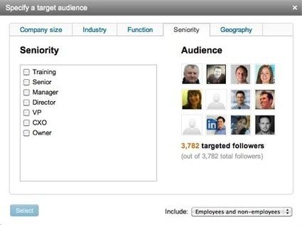 B2B Companies Can Target LinkedIn Updates | LinkedIn Marketing Strategy | Scoop.it
