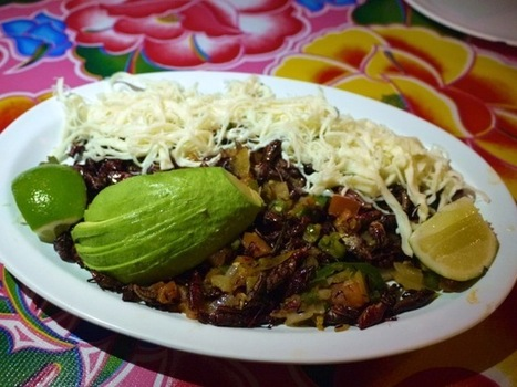 Vitamina T: Mexican-Style Grasshopper Tacos at Guelaguetza | healthy mexican food & lifestyle | Scoop.it