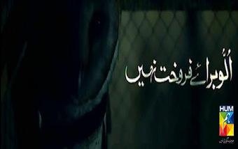 Ullu baraaye farokht nahin ost drama on humtv | All OST Original Soundtracks | Scoop.it