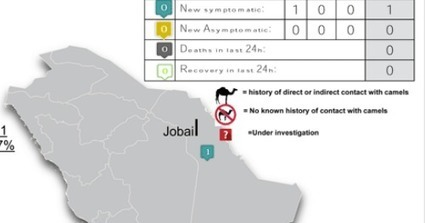 Avian Flu Diary: Saudi MOH Announces 1 Primary (Indirect Camel Contact) MERS Case | MERS-CoV | Scoop.it