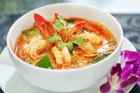 Little Known Truths About Thai Curries - Newcastle Diggers Club and Steven's Asian Kitchen | Newcastle Diggers | Scoop.it