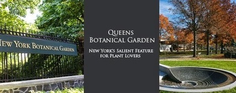 Queens Botanical Garden – New York's Salient Feature for Plant Lovers | Best Online document Printing services Delhi NCR | Scoop.it