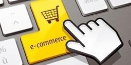 Intentions d'achat 2013: le smartphone gagne l'intérêt des internautes | Chiffres clés du numérique | Scoop.it