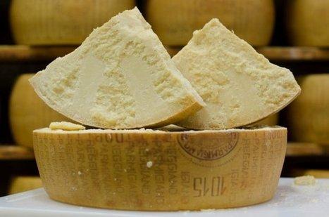 Le saviez vous ? Le Parmesan est le fromage le plus contrefait au monde ! | The Voice of Cheese | Scoop.it