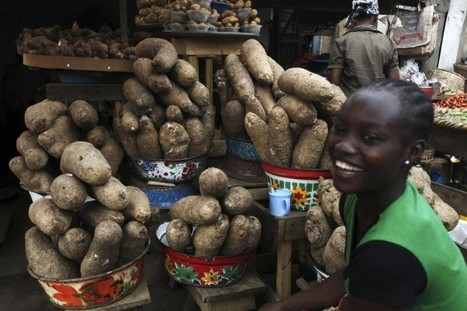 """New African academy to nurture nutritious """"orphan"""" crops 