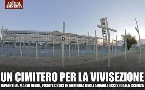 Mentre gli animalisti piantano croci anti vivisezione, Nature attacca l'Italia: non è ... - Tempi.it | STOP VIVISECTION | Scoop.it