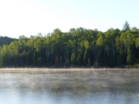 Lac Cromwell - Saint-Hippolyte - Laurentides - Québec - Canada - SBUM | Faaxaal Forum Photos gratuite Faune et Flore | Scoop.it