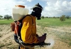 En Afrique sub-saharienne, la note sanitaire des pesticides pourrait atteindre 90 milliards de dollars | Toxique, soyons vigilant ! | Scoop.it