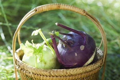 Bio : l'offre répond enfin à la demande   Chimie verte et agroécologie   Scoop.it