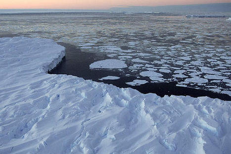 Arctic Sea Ice Disappearance Spurs Northern Greening   Heal the world   Scoop.it