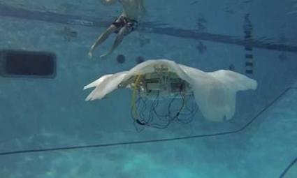Fabrican medusa robot para poder estudiar el oceáno | the new | Scoop.it