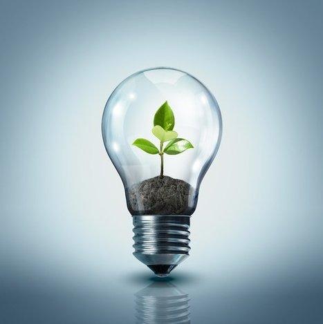 Você acha que energia elétrica se dá em árvore? - Catraca Livre | Inovação & Sustentabilidade | Scoop.it