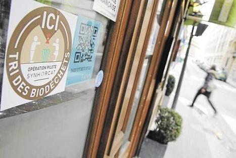 Quand les restaurateurs parisiens s'essaient à l'économie circulaire   Zero Waste France   Scoop.it