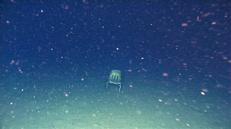 Deep-Sea Dump: ROVs Expose Trashed Ocean Floor | Wired Science | Wired.com | Sustain Our Earth | Scoop.it