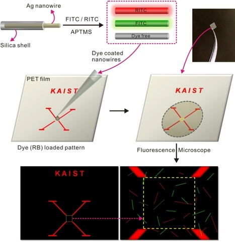 Anti-counterfeit 'fingerprints' made from silver nanowires | Amazing Science | Scoop.it