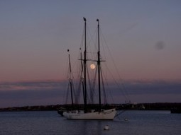 Winter 2014 Down the Homestretch… - The Black Dog Tall Ships   Tall Ships   Scoop.it