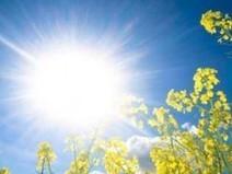 Antimoustiques et crèmes solaires : danger ? | Toxique, soyons vigilant ! | Scoop.it