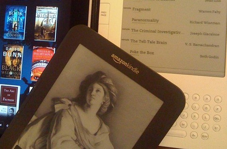 The Promise and Peril of E-Books, and the Library of the Future | An Eye on New Media | Scoop.it
