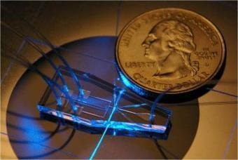 Kurzweil : Biochip-based device for cell analysis, faster, cheaper… | Inventer le monde | Scoop.it