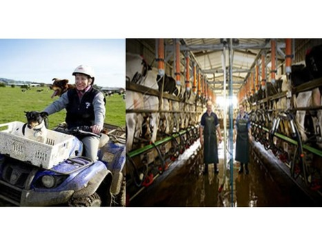5. Discover Dairy! Going from Farm to Plate | Interconnections between technologies, workers, users and the environment | Scoop.it