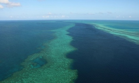 Great Barrier Reef: Unesco to release draft ruling on 'in danger' listing | Sustainable Futures | Scoop.it
