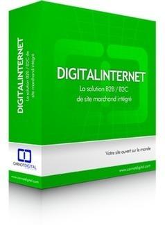 Solution B2B et B2C de site marchand intégré - Digitalinternet | Solutions web | Scoop.it