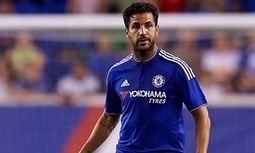 Chelsea must now try to emulate Barcelona, says Cesc Fàbregas - The Guardian | AC Affairs | Scoop.it