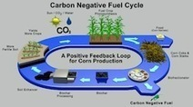 Cool Planet Chooses Louisiana for Biofuel Project - Domestic Fuel | BioChar | Scoop.it