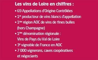 Vins et saveurs en Pays de la Loire | Facebook | Vins de Loire | Scoop.it