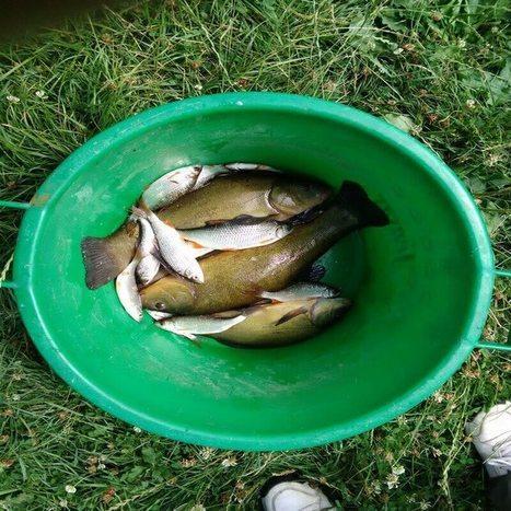 comment changer de comportement, changer ses habitudes | Ma boite à pêche | Scoop.it