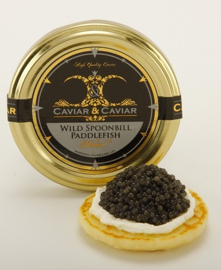 UNITED STATES: Eight men indicted in Missouri for paddlefish caviar trafficking   Wildlife   Scoop.it