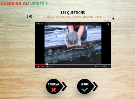 Vérité ou mensonge ? | Jeux proposés au CDI | Scoop.it