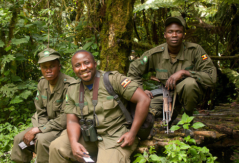 IUCN - Remember the rangers: 31 July is World Ranger Day | Endangered Wildlife | Scoop.it