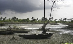 Nigeria: Clean Up of N-Delta Oil Spills to Begin in Three Weeks - Govt | Disaster  & Humanitarian Response | Scoop.it