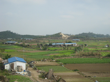 8 million acres of China's farmland are too polluted to grow food | ks3humanities | Scoop.it